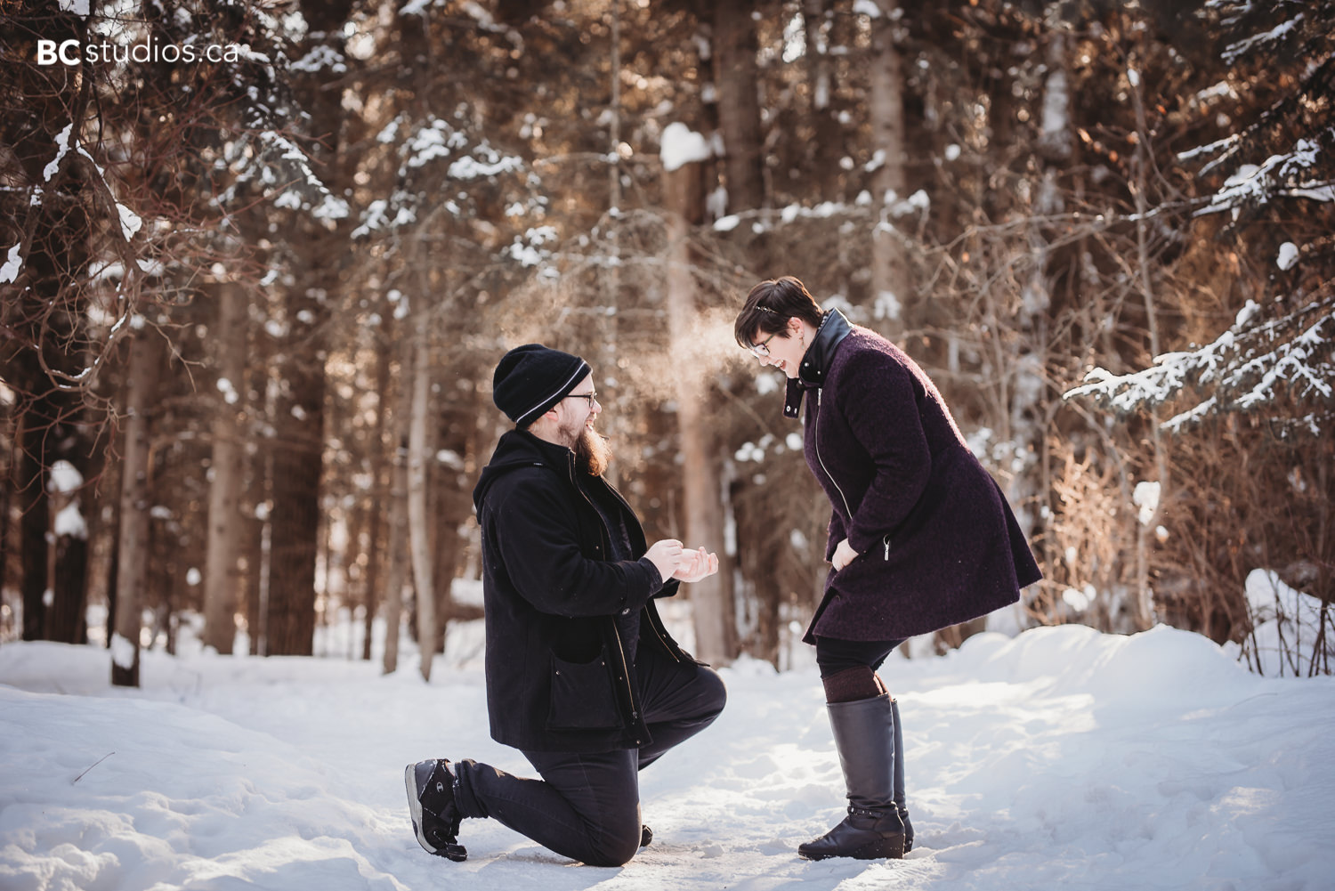 whitemud park engagement guy proposing to girl photo