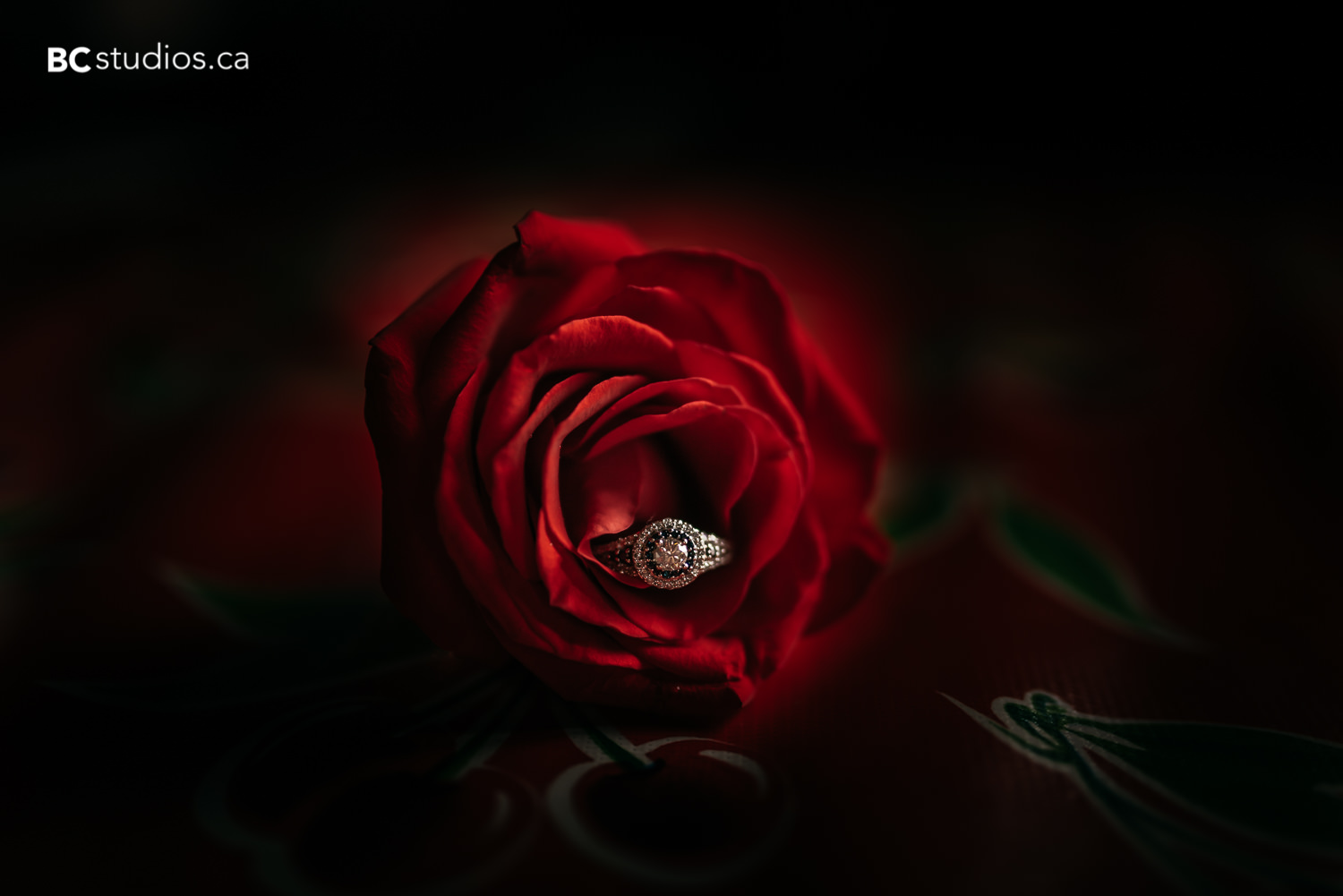 ring shot rose beauty and the beast