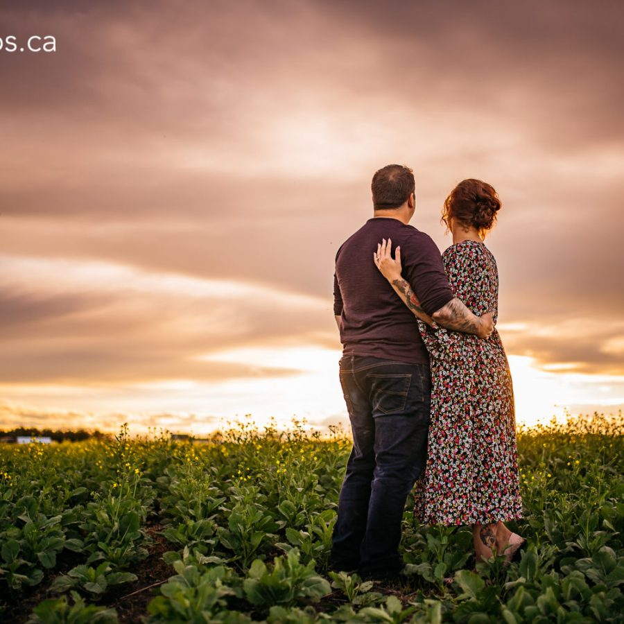 lea-engagement-session-edmonton-engagement-photographer-rural-alberta-dandelions-engagement-photos-27-of-33