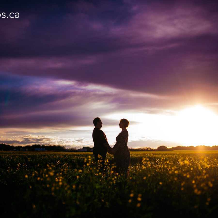 lea-engagement-session-edmonton-engagement-photographer-rural-alberta-dandelions-engagement-photos-29-of-33